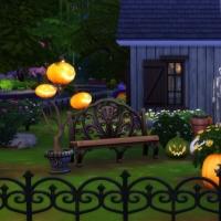 Jardin avant de nuit