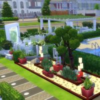 Jardin côté cuisine