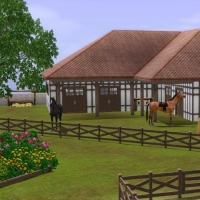 Haras Normand  L'�curie