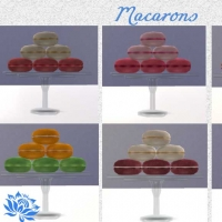 Plaisirs gourmands Macarons