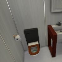 Agapanthe  WC étage