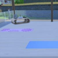 Spa du Lotus Blanc - l'espace yoga