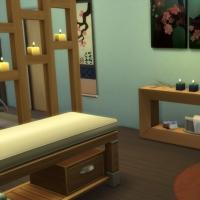 Spa du Lotus Blanc - le cabinet de soins ayurv�diques - espace massage - vue 2