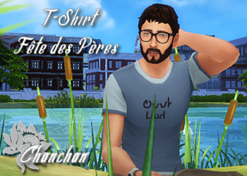http://www.sims-artists.fr/files/telechargement/1497383192/t-shirt-fete-des-peres-_thumb.png