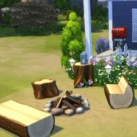 L'Estivale - feu de bois et barbecue