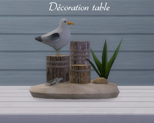 Décoration-table