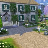 Campanule Jardin 1