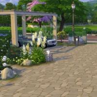 Campanule Jardin allée entrée