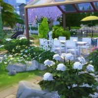 Campanule Jardin barbecue