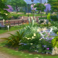 Campanule Jardin bassin