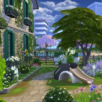 Campanule Jardin coin enfant 2