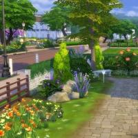 Campanule Jardin coté