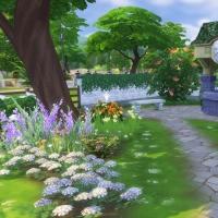 Campanule Jardin puit