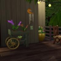 Week-end - la terrasse 2
