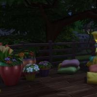 Week-end - la terrasse 4