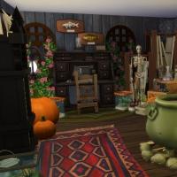 Combles, laboratoire de sorcière vue 3