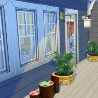 Blue - terrasse de l'�tage - les plantes