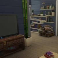 Blue - salon télé et bureau - la télé et les étagères