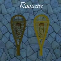 Raquette.