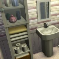 Starter champêtre - la salle d'eau