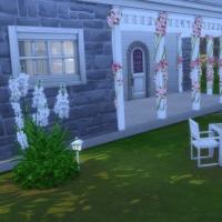Starter champêtre - le jardin