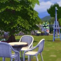 Bruy�re jardin 5