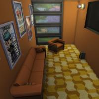 Salle de jeux vidéo/cinéma