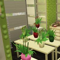 C�t� bouquets