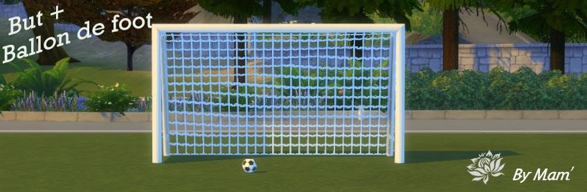 But + ballon de foot