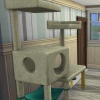 Appartement - entr�e