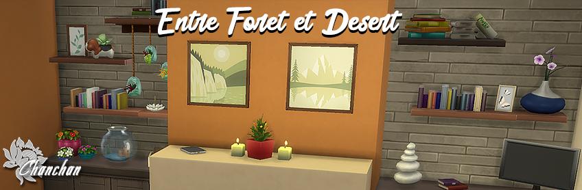 Entre Forêt et Désert