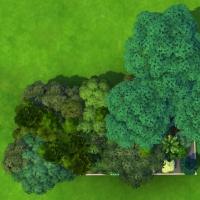 mode debug arbres pack extension vue haut