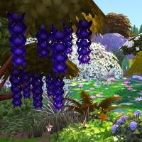 Giverny claude monet jardin printemps 4