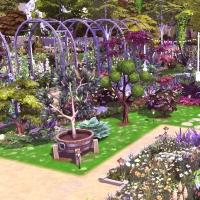 Giverny claude monet jardin printemps 6