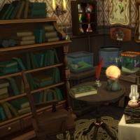 Home Witch Home - La salle de magie - vue 1