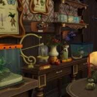 Home Witch Home - La salle de magie - vue 3