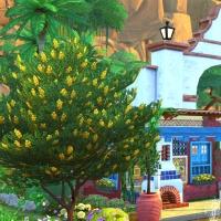 Sims 4 Mata vue exterieur 2