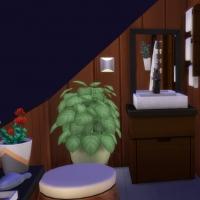 La maxi-mini - La salle de bain 1