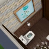 La maxi-mini - Les WC
