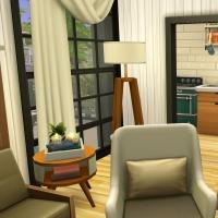 12 aloes mini maison  piece de vie