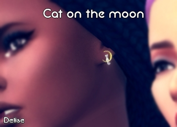 Boucles Cat on the Moon