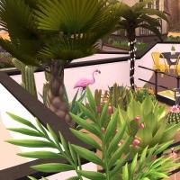 10 flora vue exterieure terrasse etage