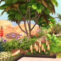 15  flora vue exterieure arriere