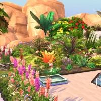 18  flora vue exterieure arriere