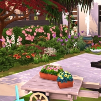 30  flora vue exterieure arriere