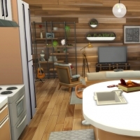 Evergreen - la cuisine et le salon