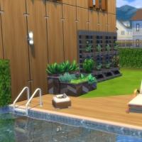 Evergreen - le jardin - vue 2