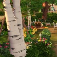 Douceur de vivre - le jardin - vue 1