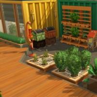 Containers en colocation - terrasses du rez-de chaussée - vue 1