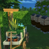 Ce bon vieux cottage - la corde à linge et le rucher